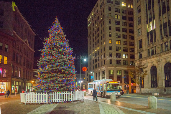 Portland Maine Monument Square Christmas Tree 2020 Corey Templeton Photography | Portland, Maine (All) | Metro Bus