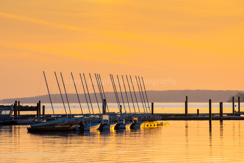 Sail Maine Morning