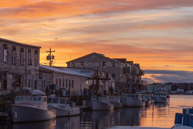 The Sky and Boats at Custom House Wharf in the Morning