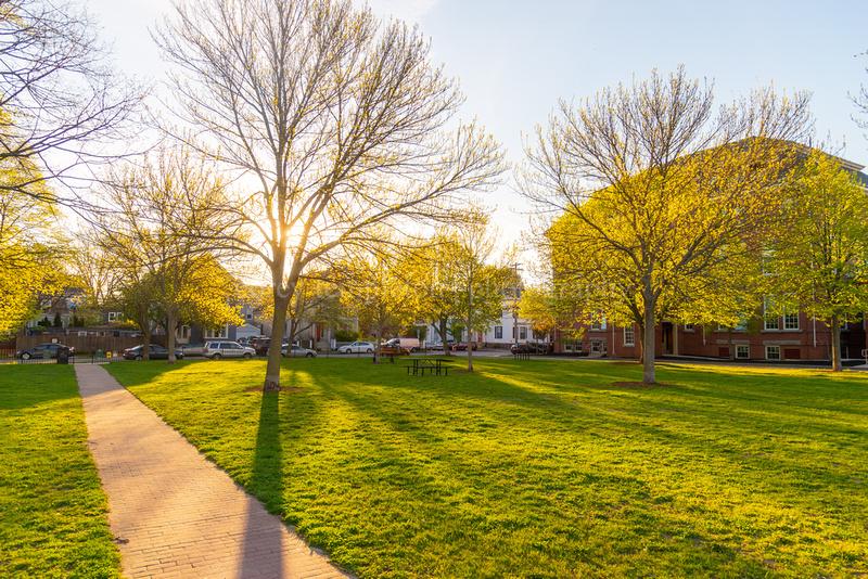 Spring Morning in Fort Sumner Park