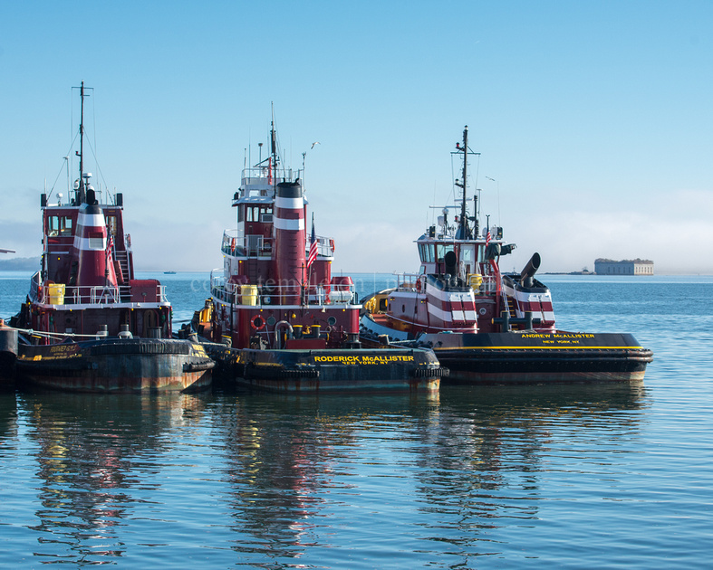 Three Tugboats and Fort Gorges