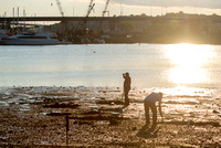 Digging for Clams in Casco Bay