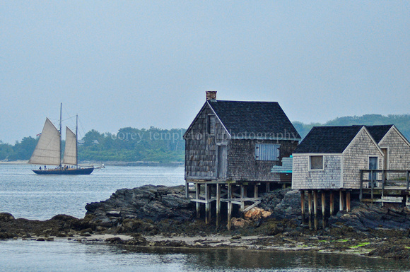 Willard Beach Shacks